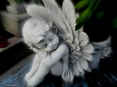 8174268_wszyscy-jestesmy-aniolami-z-jednym-skrzydlem-mozemy-latac-tylko-wtedy-gdy-obejmiemy-drugiego-czlowieka-a-nasi-przyjaciele-sa-jak-ciche-anioly-ktore-podnosza-nas-gdy